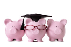 Graduate Piggy Banks student college graduation Royalty Free Stock Photo