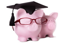 Graduate Piggy Bank student graduation Royalty Free Stock Image