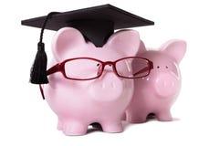 Graduate Piggy Bank student graduation Royalty Free Stock Image