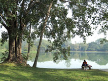 Graduated. Graduate sit under the big trees beside the reservoir Stock Photo