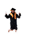 Graduated jumps Royalty Free Stock Image