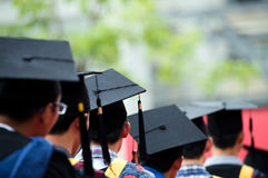 Graduates. Back of graduates during commencement Royalty Free Stock Photography