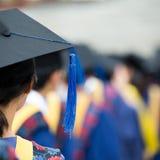 Graduates. Back of graduates during commencement Stock Image