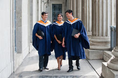 Graduates Chatting Stock Images