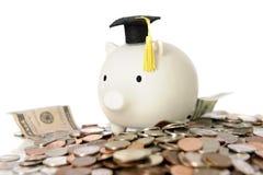 Graduatie Piggy Royalty-vrije Stock Fotografie
