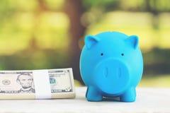 Graduatiehoed op blauw spaarvarken met stapel die van muntstukkengeld en bankbiljet op natuurlijke groene achtergrond, geld voor  royalty-vrije stock foto
