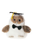 Graduating Soft Toy Owl Stock Image