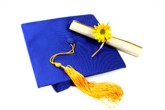Graduation. Isolated graduation cap with diploma and flower stock image