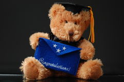 Graduation bear Stock Photography