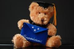 Graduation bear Stock Photography