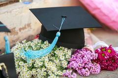 Graduation cap. And beautiful flower royalty free stock photos