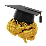 Graduation cap with golden brain. 3d illustration of graduation cap with golden brain. Isolated on white background Stock Illustration