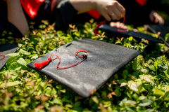Graduation cap Stock Photos