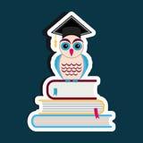 Graduation cap and owl Stock Photos