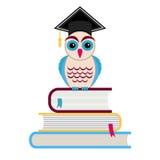 Graduation cap and owl Royalty Free Stock Photo