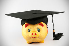 Graduation cap and piggy bank Stock Images