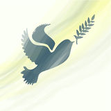 Dove with olive branch Stock Photography