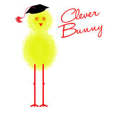 Graduation - chick, clever bunny character Royalty Free Stock Photos