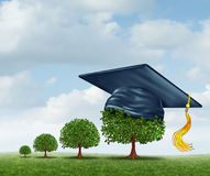 Graduation Concept. With a group of trees growing from a small sapling to a mature large tree wearing a mortar board as an education achievement award for Royalty Free Stock Photo