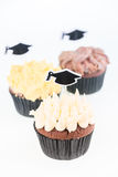 Graduation cupcakes with mortar board cake picks Stock Photography