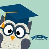 Graduation design Stock Images