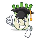 Graduation fennel character cartoon style. Vector illustration Stock Images