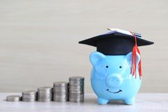 Graduation hat on blue piggy bank with stack of coins money on wooden background, Saving money for education concept royalty free stock photography