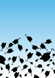 Graduation Hat Toss Stock Photo