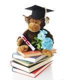 Graduation Monkey Royalty Free Stock Photo