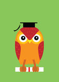 Graduation, owl Royalty Free Stock Photos