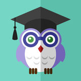 Graduation owl student  icon flat sign symbol logo Stock Image