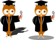 Graduation owls Royalty Free Stock Photo