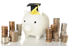 Graduation Piggy Bank Royalty Free Stock Images