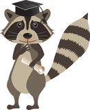 Graduation Raccoon. Cute cartoon raccoon with graduation hat and diploma. Eps10 Royalty Free Stock Image
