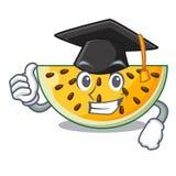 Graduation sliced yellow watermelon on character cartoon. Vector illustration stock illustration