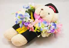 Graduation teady bear with flower Royalty Free Stock Photos