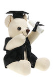 Graduation Teddy Bear Stock Photography