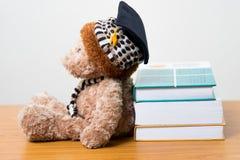 Graduierter Aufenthaltsraum des Teddybären ein Buch Lizenzfreie Stockfotos