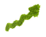 graf som 3d räknas med leafs Royaltyfri Bild