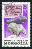Graf Zeppelin och isbjörn royaltyfri fotografi