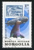 Graf Zeppelin och skyddsremsa arkivfoton