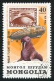 Graf Zeppelin och valross royaltyfri fotografi