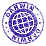 Graffiato ha strutturato DARWIN Stamp Seal illustrazione di stock