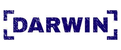 Graffiato ha strutturato DARWIN Stamp Seal Between Corners illustrazione vettoriale