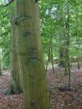 Graffit drzewo Zdjęcie Royalty Free