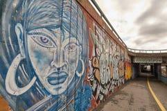 Graffit na ulicie Zdjęcie Stock