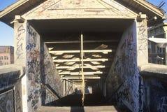 Graffiti on abandoned building hallways, Holyoke, Massachusetts Stock Photography