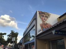 Wall art in Little Havana, Florida. Royalty Free Stock Images