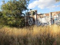 Graffiti au Mexique photos stock