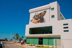 Graffiti auf der Wand eines Gebäudes in der Stadt Campeche, Zeichnung ein männlicher Kopf und ein Hund San Francisco de Campeche, stockfotografie